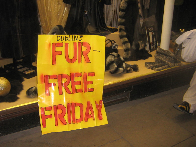 Fur free friday 08